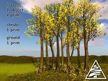 Beech forest M/T (4 LI) + full perm ground texture