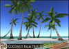 HeadHunter's Island - Coconut palmtree set - 5 trunk types - 2 leaf types - MESH