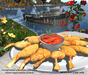Aphrodite seafood: panned shrimps with tomato sauce platter