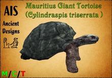 Mauritius Giant tortoise (Cylindraspis triserrata )