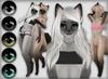 Kemono Siamese Cats