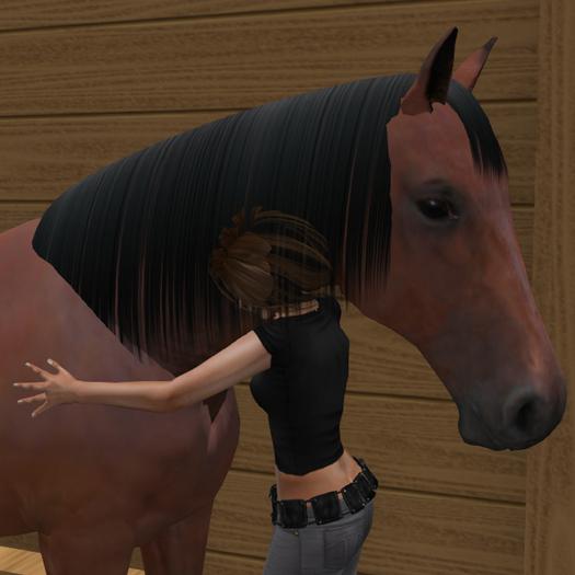 Hug your horse