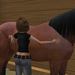 Pet and Groome Your Horse