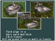 Farm Pigs in a  mud hole