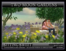 SITTING SWEET - SMALL GARDEN AND BENCH*