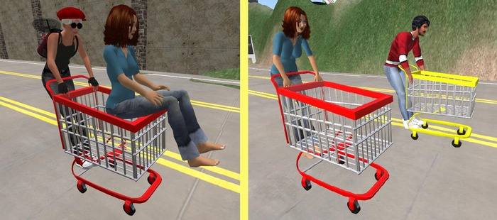 Wingsong Shopping Cart RIDE LITE DB