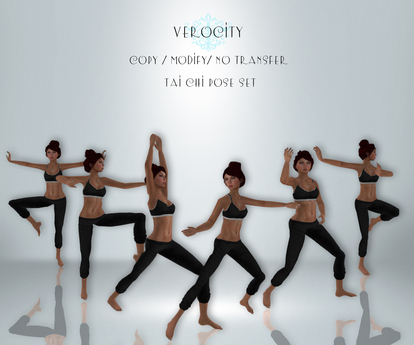 Verocity - Tai Chi Set