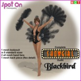 Spot On SHOWGIRL Outfit - Blackbird - (boxed)