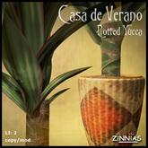 *Zinnias* Casa de Verano Potted Yucca