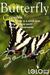 COPYABLE Free-flying Butterfly - Zebra