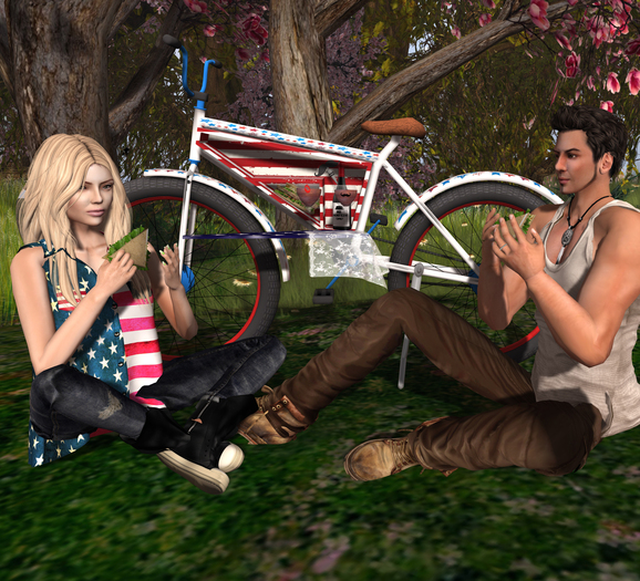 """Aphrodite Picnic Bike """"Independence Day""""-Male American version for singles & couples- Includes ridable bicycle"""