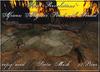 African alligator pond with sound cm