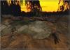 African aligator pond 001