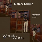 Library Ladder (boxed) copy