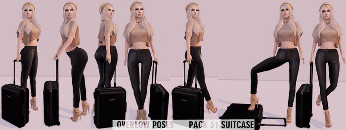 Overlow Poses - Pack 31 Suitcase